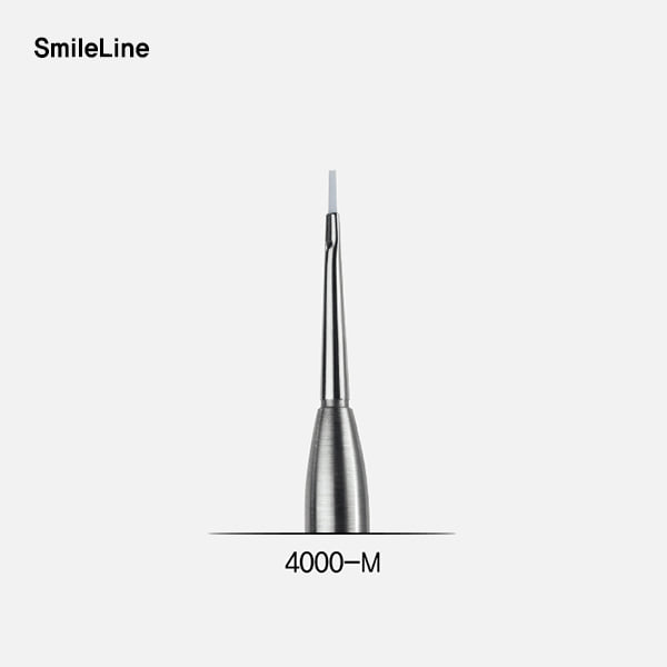 Paste opaque brush module, small (브러시 팁)SmileLine (스마일라인)
