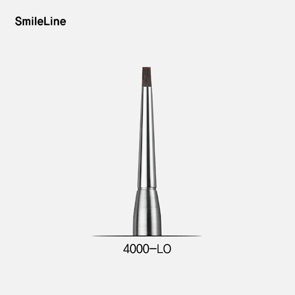 Paste opaque brush module, large (브러시 팁)SmileLine (스마일라인)